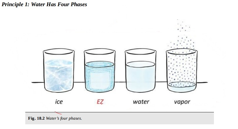 Water-Chemistry-4th-Phase-Gerald-Pollack-and-EZ-Ignored-Discoveries-11.jpg